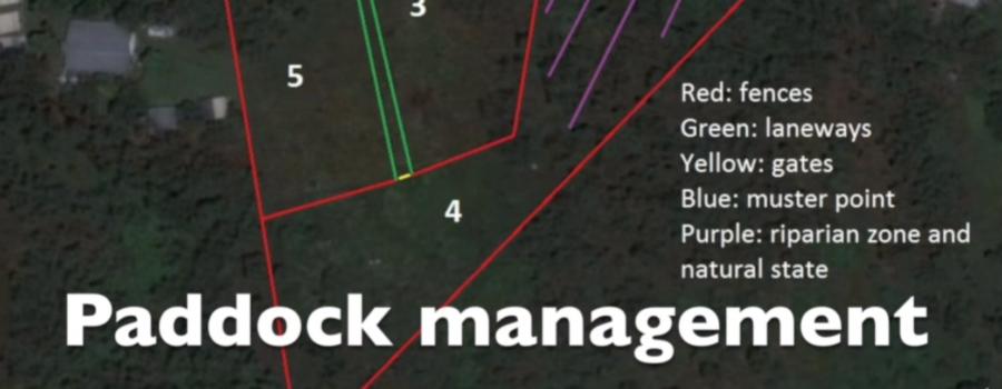Paddock management, laneway system, horse utopia